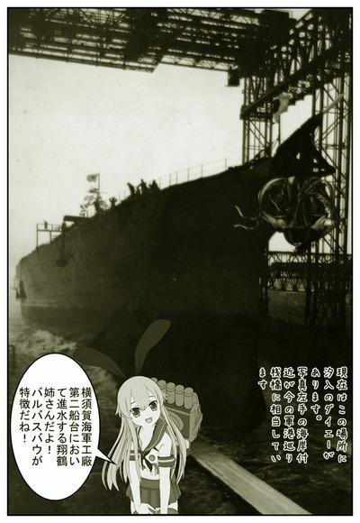 翔鶴_001ab.jpg